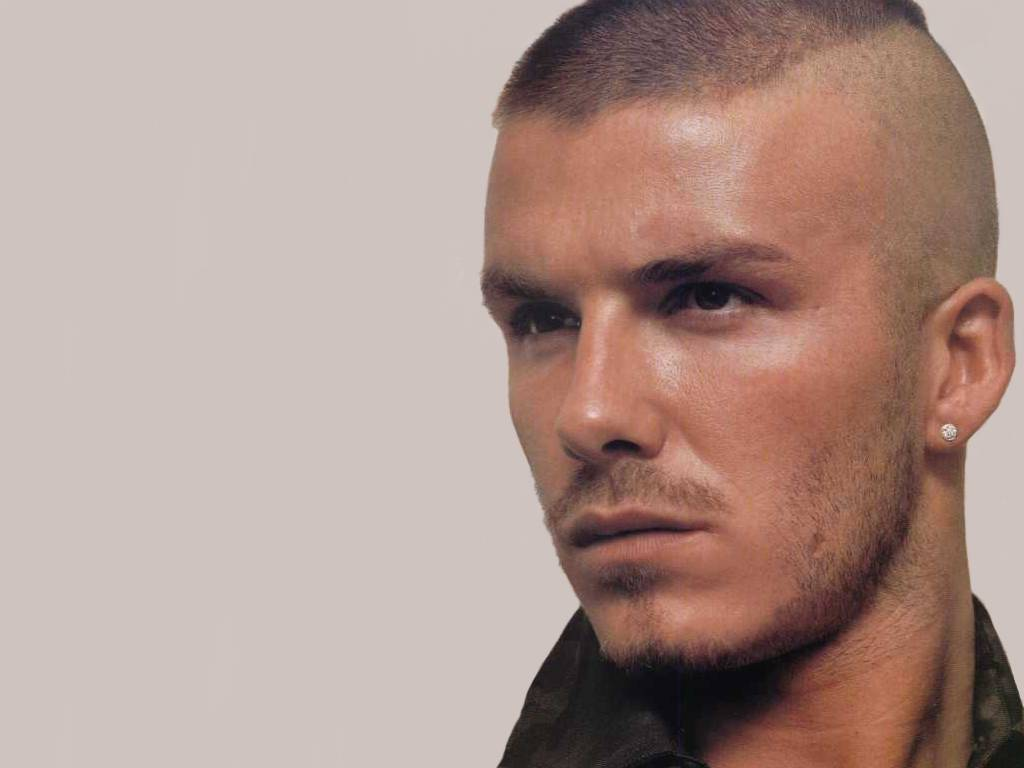 David Beckham Biography    David Beckham Picture    David Beckham    David Beckham