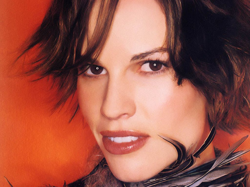 Biography Hilary...Hilary Swank Biography