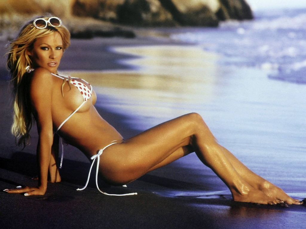 http://www.famous-people-search.com/pamela_anderson/pamela_anderson_wallpaper/pamela_anderson_wallpaper_1024x768_004.jpg